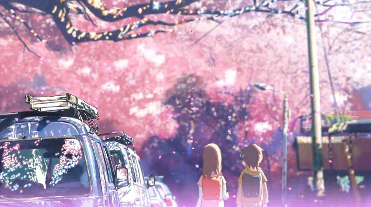 年少时的贵树和明理在樱花树下